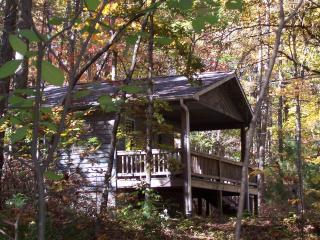 Cabin in Willoughby Woods   2  bedroom cabins - Brevard vacation rentals