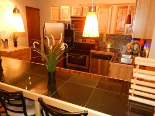 2-Bedroom Apartments, downtown, close to Main St. - Lake Placid vacation rentals