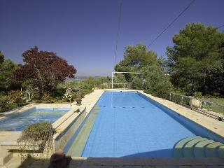 Privacy in large Villa with a huge pool! Specials! - Israel vacation rentals