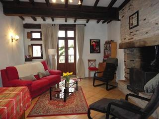 16th Century House in Beautiful French Village - Castelnau-de-Montmiral vacation rentals