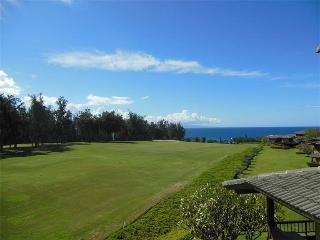 1 bedroom House with DVD Player in Kapalua - Kapalua vacation rentals