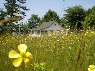 Wildflower Cottage - Perry vacation rentals