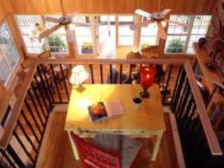 Charming House with Deck and Internet Access - Darien vacation rentals