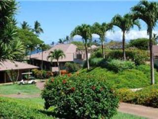 Maui Eldorado: Maui Condo G101 - Image 1 - Ka'anapali - rentals