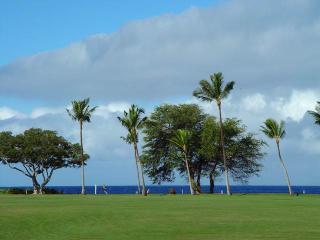 Maui Eldorado: Maui Condo J123 - Ka'anapali vacation rentals