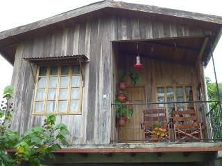 Quiet & Relaxing,  Tuis Turrialba, Birdwatching - Turrialba vacation rentals