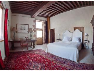 Charm, history and swimming-pool! - Le Theil vacation rentals