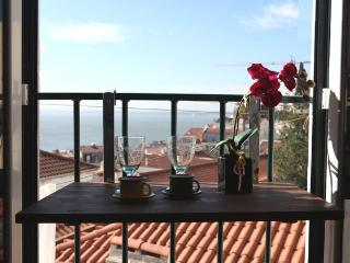 SAO VICENTE II, panorama view from french balcony - Lisbon vacation rentals