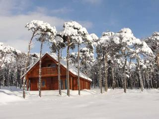 Lovely Cabin with Deck and Internet Access - Huntly vacation rentals