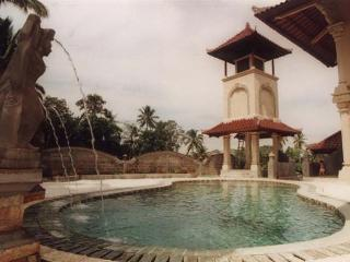 Villa Boutique, WiFi, Pool, Nice Views, Breakfast - Ubud vacation rentals