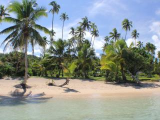 SigaSiga Sands COCO Cottage - White Sand Beach! - Vanua Levu vacation rentals