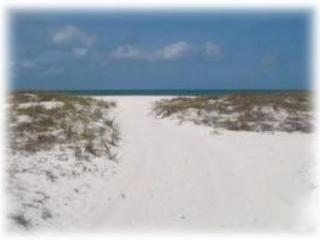 Coconut Breeze IV - Image 1 - Clearwater Beach - rentals