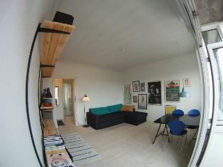 Large Copenhagen apartment with 2 balconies - Copenhagen vacation rentals