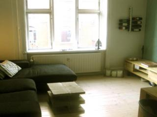 Copenhagen apartment in a quiet area near the beach - Copenhagen vacation rentals