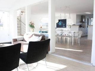 Great Copenhagen apartment at Ishoej near Arken Museum - Copenhagen vacation rentals