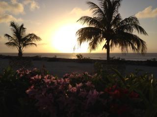 Dive into paradise oceanfront -Marazul-7B-Curacao - Westpunt vacation rentals