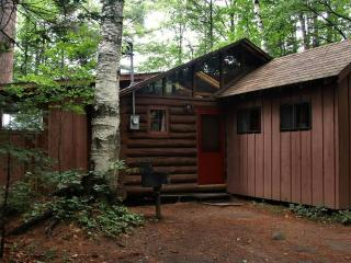 Bright 1 bedroom Cabin in Minerva with Internet Access - Minerva vacation rentals