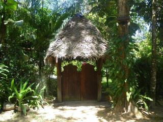 Casa Mono - Gorgeous 3 bedroom & loft Paunch Beach - Bocas del Toro vacation rentals