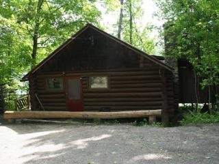 Bright 3 bedroom Minerva Cabin with Deck - Minerva vacation rentals