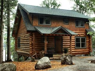 Nice Cabin with Deck and Internet Access - Minerva vacation rentals