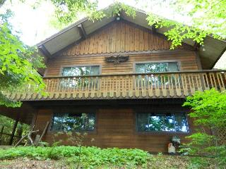 Bright Minerva Chalet rental with Deck - Minerva vacation rentals