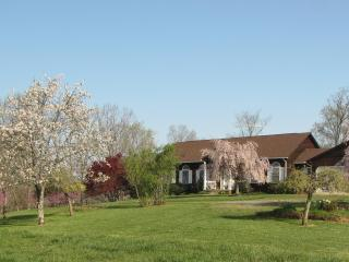 350 Old Farm Road - Lexington vacation rentals