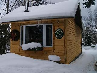 Highland Cottage, Lake Placid Village, NY - Lake Placid vacation rentals