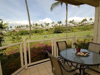 Grand Champions #65 - Maui vacation rentals