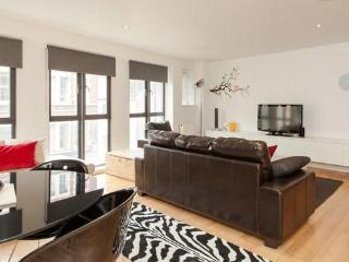 Brilliant Location, Modern & Secure - London vacation rentals