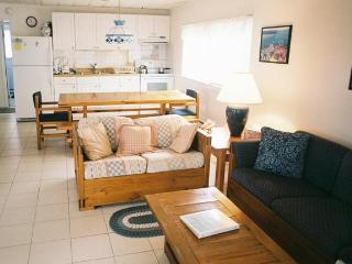 3 bedroom Apartment with Deck in Cape May Point - Cape May Point vacation rentals