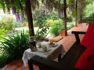 Wisteria Cottage B&B Bellingen, NSW - Dorrigo vacation rentals