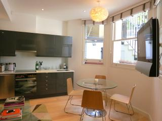 A Charming Newly Developed Studio/One Bedroom Apartment in Fantastic Location - London vacation rentals