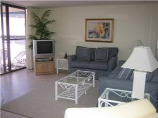 House Of The Sun #508GV - Image 1 - Sarasota - rentals