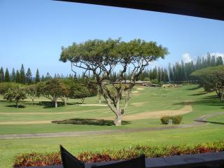 Beautiful 2 bedroom Condo in Kapalua - Kapalua vacation rentals