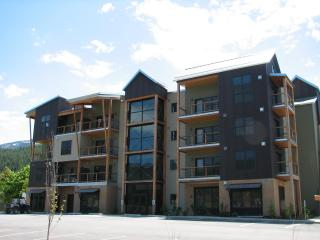 Upscale Studio Condo, Full Kitchen, Breakfast - Kellogg vacation rentals