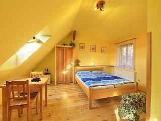 Perfect BandB in historic town C.Krumlov! - Cesky Krumlov vacation rentals