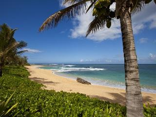 Ka Wai Aloha - Walking distance to beach - Hanalei vacation rentals