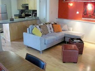 Modern Loft in the Heart of Austin! Quiet, Cozy! - Austin vacation rentals
