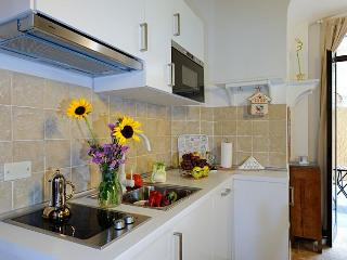 Florence Historic Center Apartment with Backyard - Florence vacation rentals