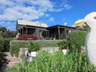 Bellbird  Bed and Breakfast in the heart of Napier - Napier vacation rentals