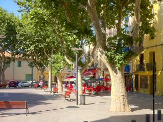 myperpignan live in the ambience of the city - Perpignan vacation rentals