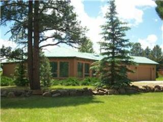 EMILY ELIZAB - Image 1 - Pagosa Springs - rentals