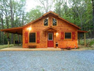 Bear Necessity - Murphy vacation rentals