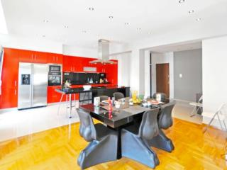 A Luxury and Comfortable Apartment in Athens - Athens vacation rentals