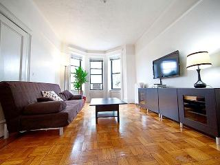 Bright and Quiet 2BR in Park Slope - Brooklyn vacation rentals