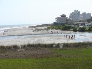 Best View On The Beach- Amazing Pet-Friendly Myrtle Beach Rental with WiFi - Myrtle Beach vacation rentals