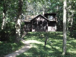 3 Bears Cozy Cottage, 2 minute walk to Lake - Michiana Shores vacation rentals
