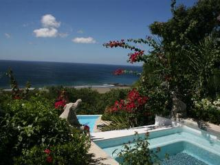 Private Luxury Villa with Panoramic Ocean Views an - San Juan del Sur vacation rentals