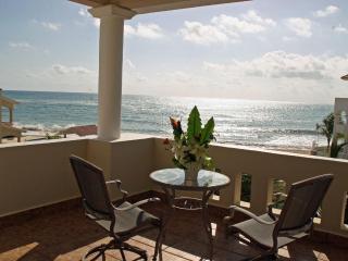 SPECIAL!! Villa Dolphin Beachside Villa 4 bedrooms - Playa Paraiso vacation rentals
