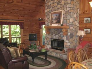 3 bedroom House with Deck in Galena - Galena vacation rentals